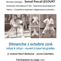 stage-de-karate-pascal-lecourt-2016-10-02