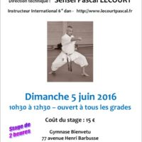 STAGE DE KARATE Pascal Lecourt 2016 06 05