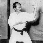 L'école shotokan