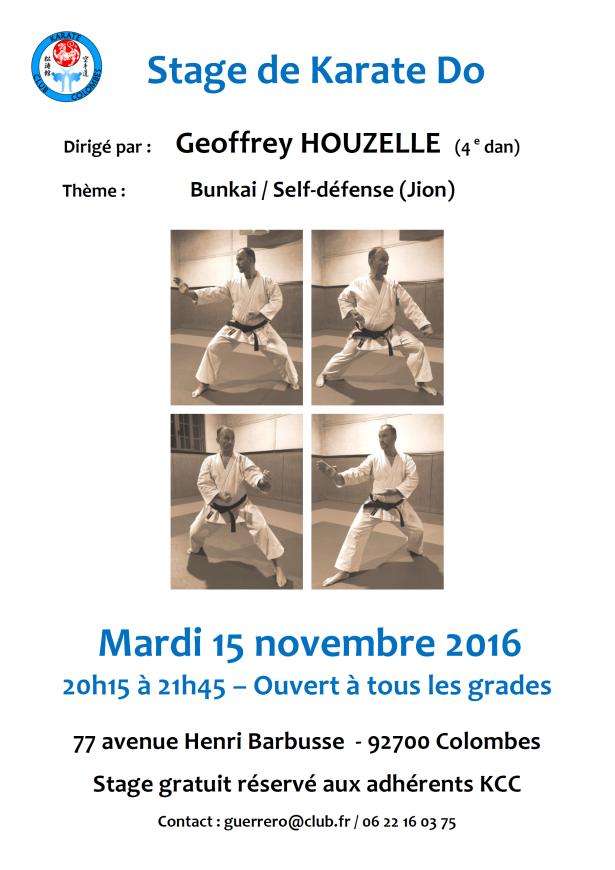 stage-de-karate-geoffrey-houzelle-2016-11-15