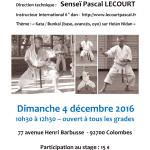 Stage avec Pascal Lecourt le 4 décembre 2016