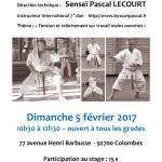 Stage avec Pascal Lecourt le 5 février 2017