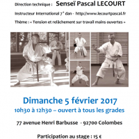 STAGE DE KARATE Pascal Lecourt 2017 02 05