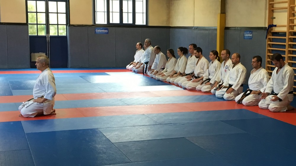 Sensei Pascal Lecourt - Karate Seminar at Colombes (2016)