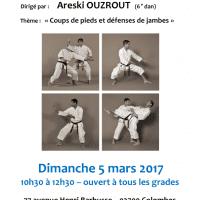 STAGE DE KARATE Areski Ouzrout 2017 03 05