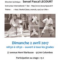 STAGE DE KARATE Pascal Lecourt 2017 04 02