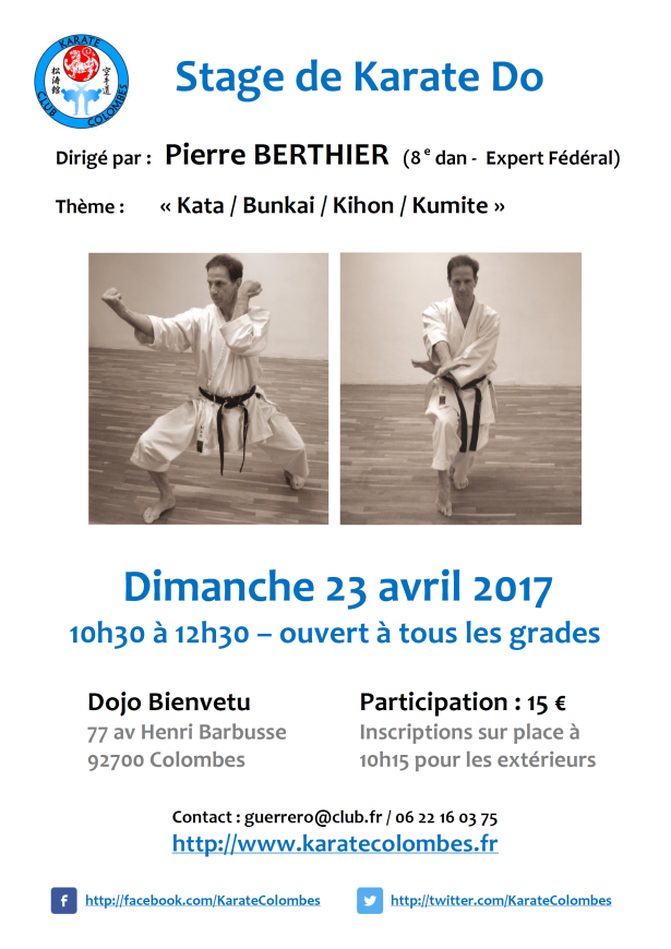 stage-de-karate-pierre-berthier-2017-04-23