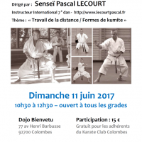 STAGE DE KARATE Pascal Lecourt 2017 06 11