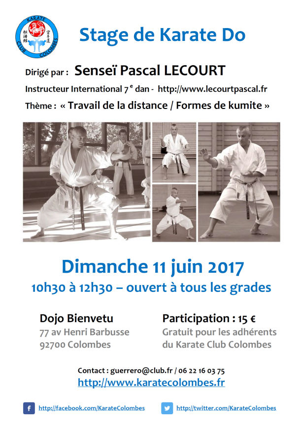 stage-de-karate-pascal-lecourt-2017-06-11