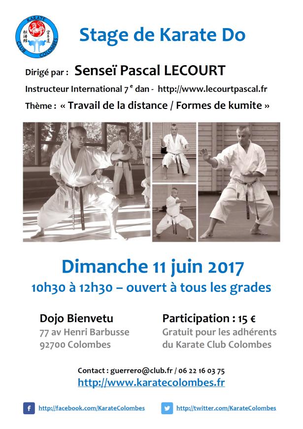 stage-de-karate-pascal-lecourt-2017-06-11