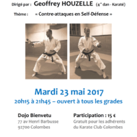STAGE DE SELF DEFENSE Geoffrey Houzelle 2017 05 23