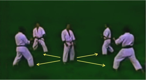 Demonstration kata bunkai