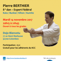 STAGE DE KARATE Pierre Berthier 2017 11 14