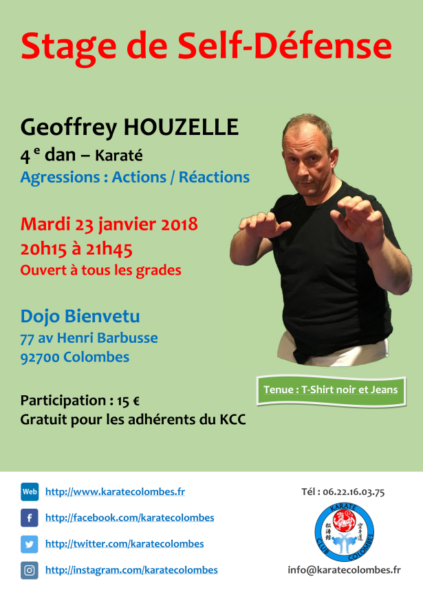 STAGE DE SELF DEFENSE Geoffrey Houzelle 2018 01 23