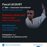 STAGE DE KARATE Pascal Lecourt 2018 02 04
