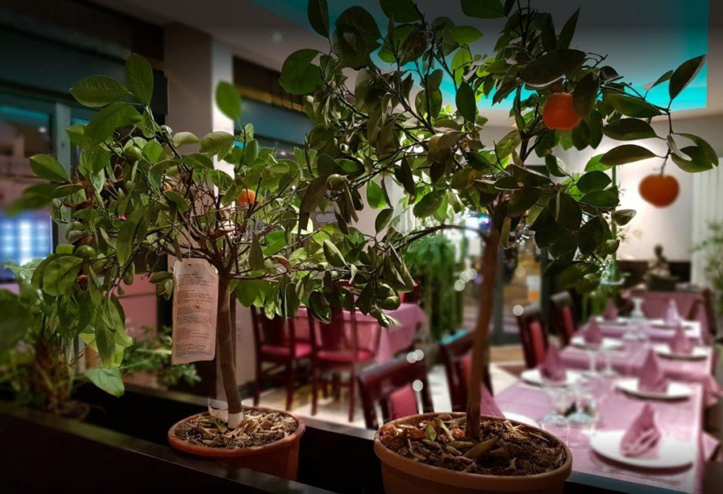 Restaurant Le jardin de bambou à Colombes
