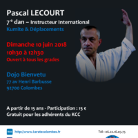 STAGE DE KARATE Pascal Lecourt 2018 06 10