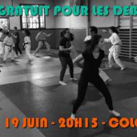 cours débutant karate juin 2018