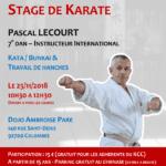 Stage avec Pascal Lecourt le 25-11-2018