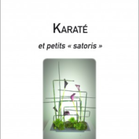 Jacques Tapol - Karaté et petits satoris