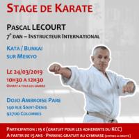 Stage Karate Pascal Lecourt 2019 03 24