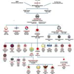 Organisations internationales de karaté shotokan