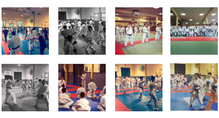 Section Karate Adultes FB