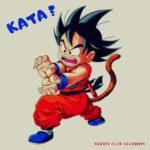 Dragonballz : Goku effectue quel kata de karaté ?