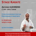 Stage Professeurs et Assistants le 31-08-2019