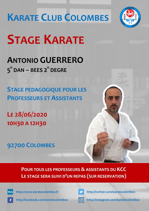 Stage Karate Professeurs & Assistants 2020 06 28