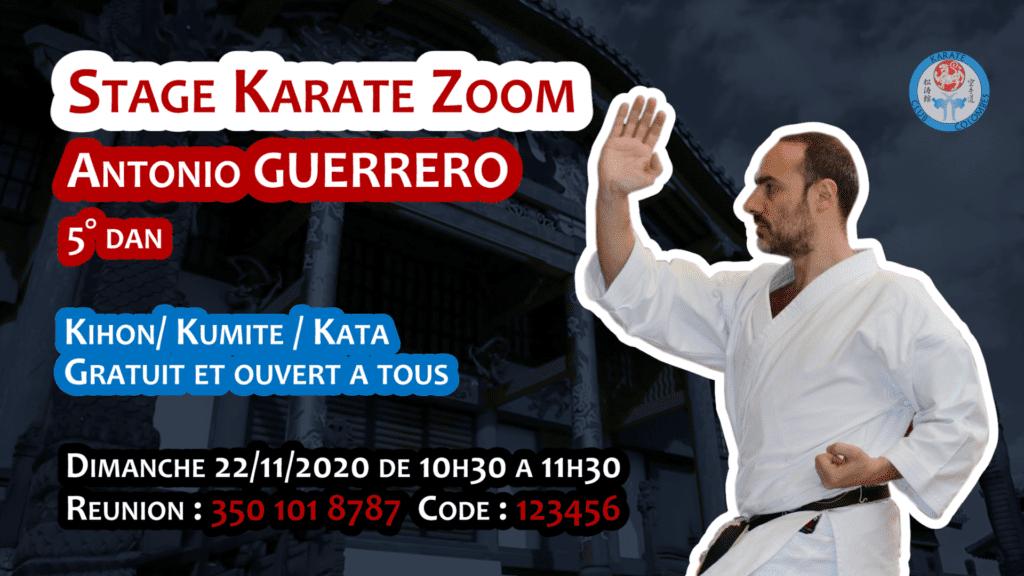 Stage Karate #Zoom 2020 11 22