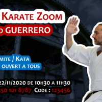 Stage Karate #Zoom 2020 11 22