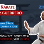 Stage karaté sur Zoom le 06-12-2020