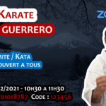 Stage karaté sur Zoom le 06-02-2021