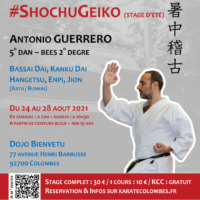Stage Karate #ShochuGeiko 2021 08 24